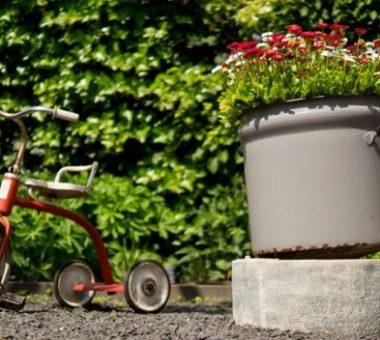 להמשך קריאה - הכל על הכנת קרקע לגינה