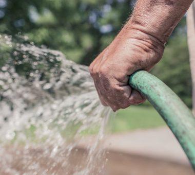 להמשך קריאה - איך לקצץ בהוצאות המים בגינה