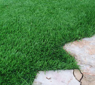 להמשך קריאה - 12 טיפים מקצועיים לרכישת דשא סינטטי